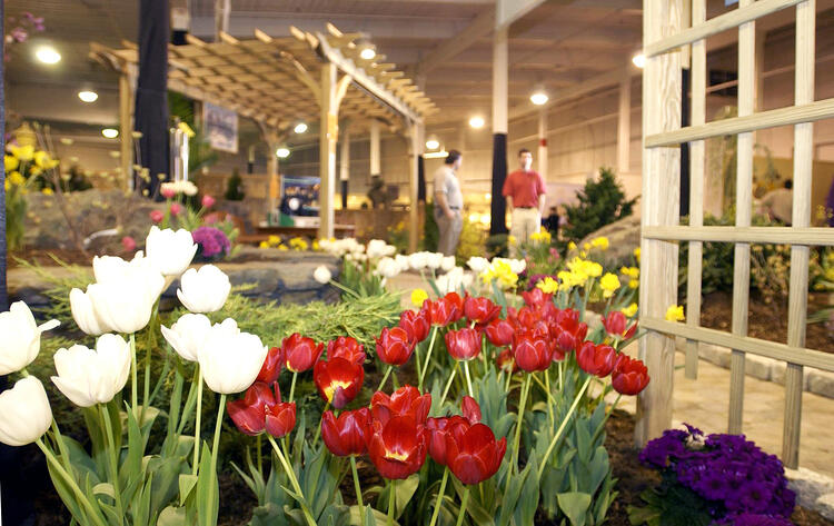 Flowers at the Original Western Mass Home and Garden Show