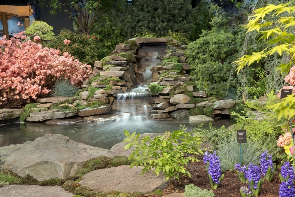 2018 Boston Flower and Garden Show